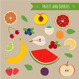 Fruits and berries set. Illustration of some summer fruits and forest berries Stock Photography