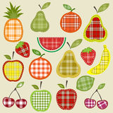 Fruits and berries. Set of fruits and berries with plaid patterns Royalty Free Stock Photo