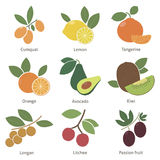 Fruits and berries Stock Images