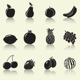 Fruits and berries, silhouettes Stock Image