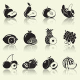 Fruits and berries, silhouettes Royalty Free Stock Photography
