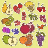 Fruits and berries sketch stickers colored Royalty Free Stock Images
