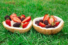 Fruits and berries, strawberries, blackberries in coconut. On the green grass. stock image