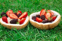 Fruits and berries, strawberries, blackberries in coconut. On the green grass. royalty free stock photography