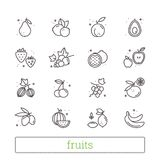 Fruits, berries thin line icons. Modern linear design elements, food symbols. Isolated vector set on white background. Fruits and berries thin line icons Stock Photo