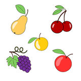 Fruits and berries on a transparent background. Pear grapes apple and cherry. Vector Royalty Free Stock Photo