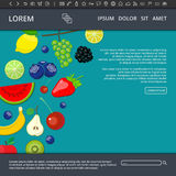 Fruits and berries web banner Stock Images