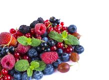 Fruits and berries on white background. Ripe red currants, raspberries, blueberries,  strawberries, gooseberrie, blackberries with. A mint leaf. Sweet and juicy Royalty Free Stock Images