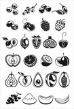 Fruits and berry icons. Fruits and berry black and white icons Stock Photo