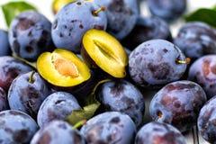 Fruits bleus de prunes La vue à partir du dessus images libres de droits