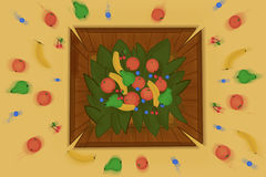 Fruits in a box Stock Image