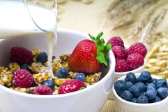 Fruits breakfast. Healthy Fresh Fruits On Breakfast royalty free stock images