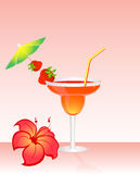 Fruits bright cocktail Stock Images