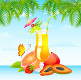 Fruits bright cocktail Royalty Free Stock Images