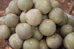 Fruits of Cambodia. This is a picture of very strange and rare fruit i found on the road from Kampong Cham to Kampong Thom. It has hard shell. Size mostly Stock Photography