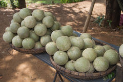 Fruits of Cambodia. This is a picture of very strange and rare fruit i found on the road from Kampong Cham to Kampong Thom. It has hard shell. Size mostly Royalty Free Stock Images