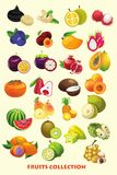 Fruits cartoon collection for kids Stock Photography