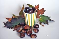 Fruits, châtaignes et raisins d'automne Photographie stock libre de droits