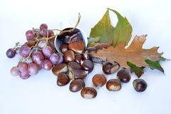 Fruits, châtaignes et raisins d'automne Photo libre de droits