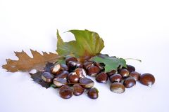 Fruits, châtaignes et raisins d'automne Photos libres de droits