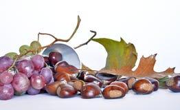 Fruits, châtaignes et raisins d'automne Image libre de droits