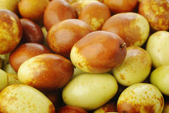 Fruits chinois de jujubes Image stock