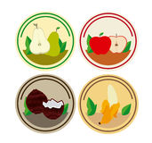 Fruits circles design Royalty Free Stock Image