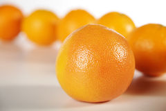 Fruits close up oranges Stock Images