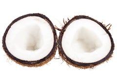 Fruits of coconut isolated on white background Royalty Free Stock Image