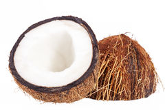 Fruits of coconut isolated on white background Royalty Free Stock Images