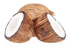 Fruits of coconut isolated on white background Stock Photo