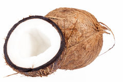 Fruits of coconut isolated on white background, close up Royalty Free Stock Photography