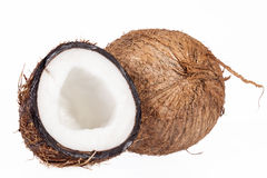 Fruits of coconut isolated on white background Royalty Free Stock Photo