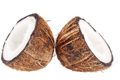 Fruits of coconut isolated on white background Royalty Free Stock Photos