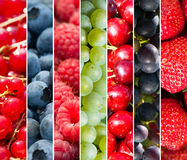Fruits collage. Collage of different pictures of fruits Stock Photos