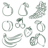 Fruits collection royalty free illustration