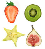 Fruits collection. Half fruits collection isolated on white Royalty Free Stock Photo
