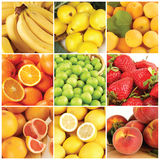 Fruits collection Stock Image