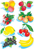 Fruits Collection Stock Photography