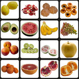 Fruits collection. Apple breakfast candy collection cookie coolness dessert editing stock photo