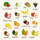 Fruits collection icon Stock Images