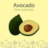 Fruits collection image Royalty Free Stock Image
