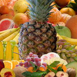 Fruits collection. Royalty Free Stock Images