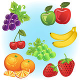 Fruits Collection. Set of fruits like grape, strawberry, chardonnay, cherry, orange, apples and banana royalty free illustration