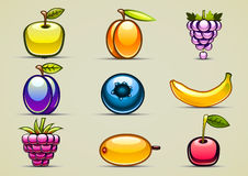 Fruits collection. Set of nine colorful fruits Royalty Free Stock Photo
