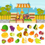 Fruits color flat icons set. Fruit shop in the city color illustration for web and mobile design Royalty Free Stock Image
