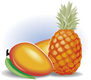 Fruits composition. Royalty Free Stock Images
