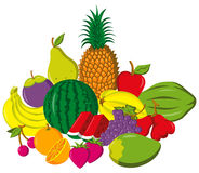Fruits composition Stock Images