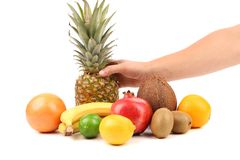 Fruits composition. Hand holds pineapple. Stock Photos