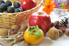 Fruits and cosmos Royalty Free Stock Photos